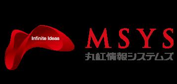 MSYS_Logo